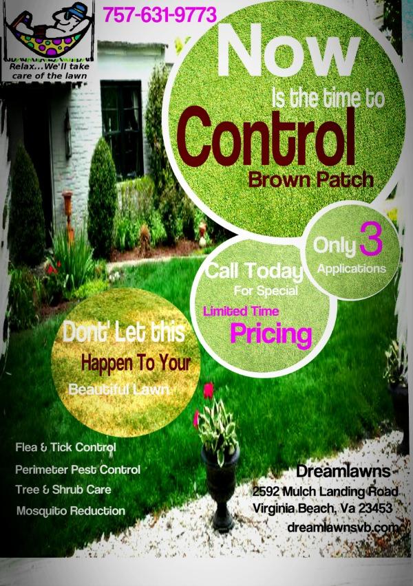 Best Lawn Care Virginia Beach