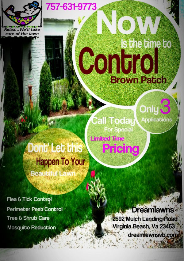 Best Lawn Care Virginia Beach