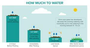 how much to water grass virginia beach
